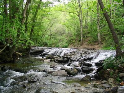 Le Contrat de Rivière du Garon