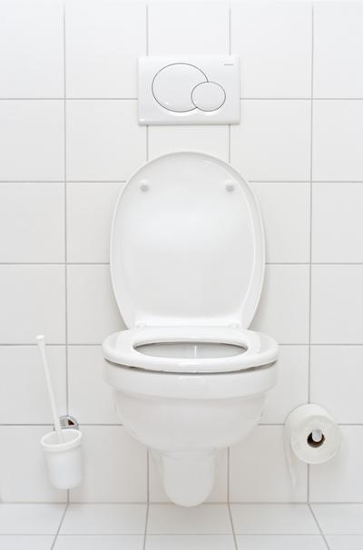 Equipez vos toilettes d une chasse deux vitesses - Reglage debit chasse d eau ...
