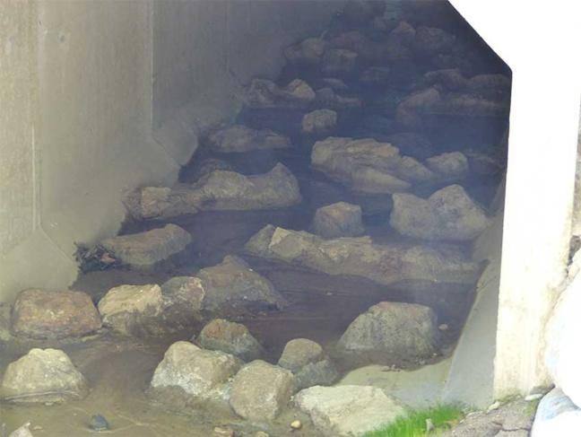 Pour favoriser la circulation des espèces aquatiques, des pierres ont été cimentées sur le fond du dalot pour créer une continuité entre l'ouvrage et la rivière.