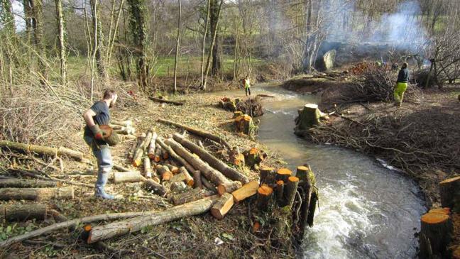 La brigade de rivière envoie du bois