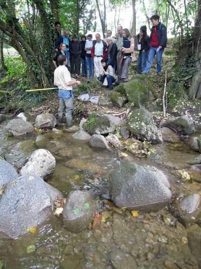 Nos rivières sont-elles victimes de pollutions ?