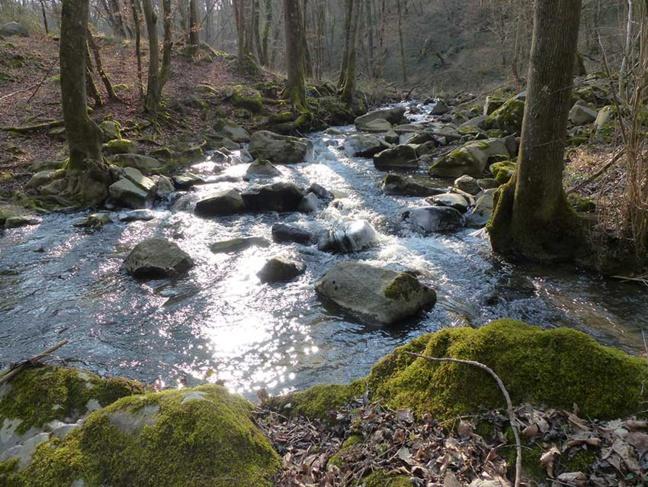 Donnez votre avis sur l'avenir de l'eau