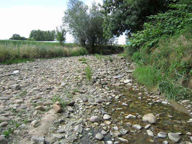 Le déficit pluviométrique impacte fortement le débit des rivières et le niveau de la nappe.