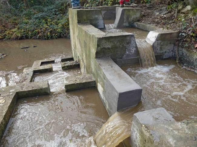 Rénovation de la passe à poissons du Fondagny