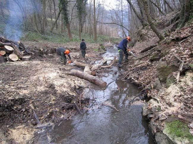 8 semaines de travail ont été nécessaires aux 2 brigades de rivière pour l'entretien des berges du Chéron.