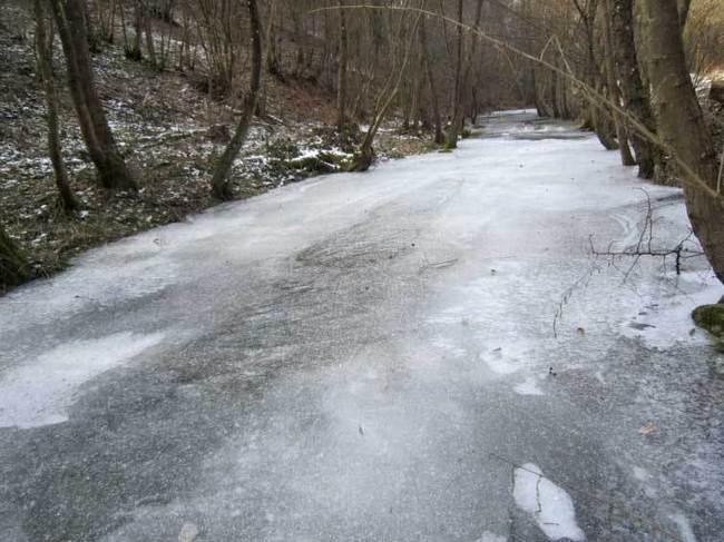 Le Garon et sa tenue d'hiver - 8 février 2012