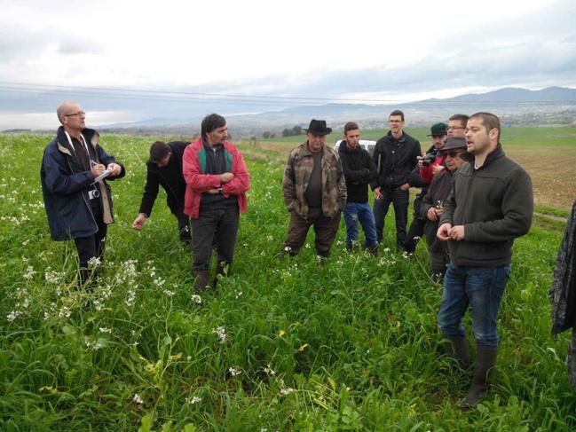 Les CIPAN sont semées pour couvrir le sol d'une même parcelle agricole entre la récolte d'été et la culture suivante.