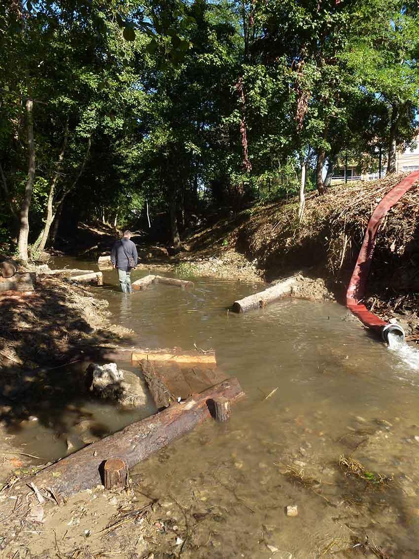 Profondément ancrées dans la berge, les grumes de pin douglas disposées en épis permettent de réduire la lame d'eau de la rivière.