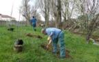 110 arbres plantés sur les berges du Garon à Grigny