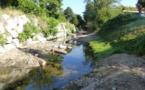 Diversification de l'habitat pisicole sur le Garon