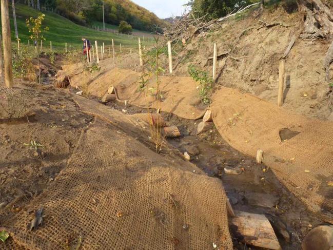 200 boutures de saules et 150 plants forestiers permettront d'ombrager le cours d'eau.
