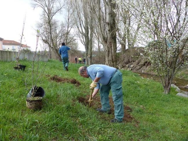 Les 18 et 19 mars 2019, la Brigade de rivière a planté une centaine d'arbres sur la rive gauche du Garon à Grigny.