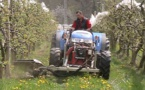 Gestion de l'herbe en arboriculture