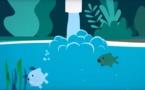 Stop à la pollution plastique dans nos milieux aquatiques