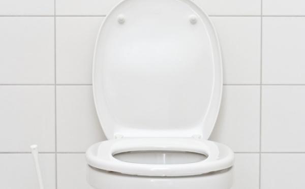 Equipez vos toilettes d'une chasse à deux vitesses